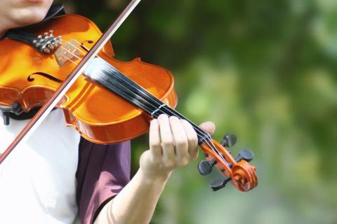 Metoda Suzuki najbardziej kojarzona jest z nauką gry na skrzypcach. Ale nie jest to jedyny instrument, który dzieci moga poznawać. Do wyboru są również fortepian (pianino), gitara, wiolonczela, harfa. Metoda Suzuki wykorzystywana jest również do nauczania śpiewu. O szczegóły warto pytać w Centrum Rozwoju Uzdolnień Metodą Suzuki